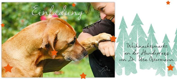 Einladung zum Weihnachtsfest Hundepraxis Welver